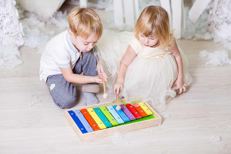 Музыкальные инструменты для детей: виды, названия, особенности